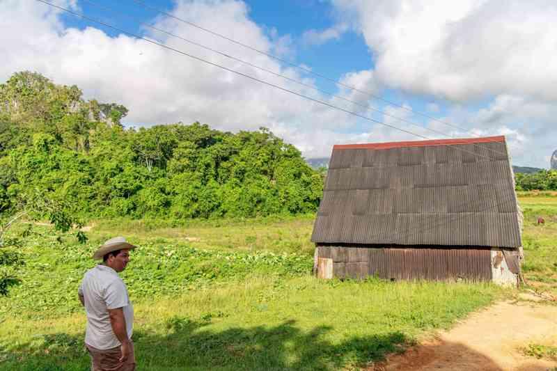 Boer en tabaksschuur