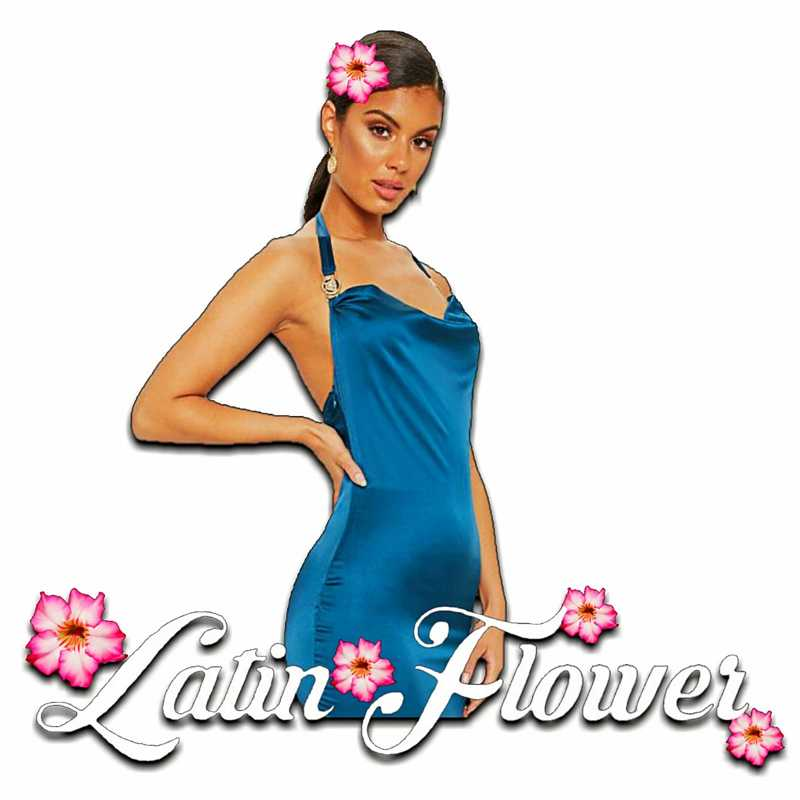 Latin Flower (Powered by BMK Global Latin Events & Entertainments) in Rotterdam